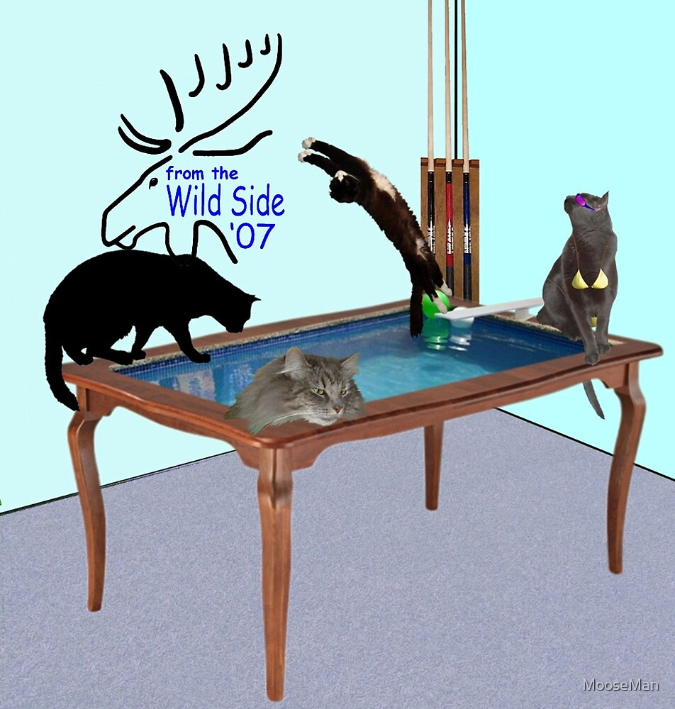 Cats on a pool table by MooseMan