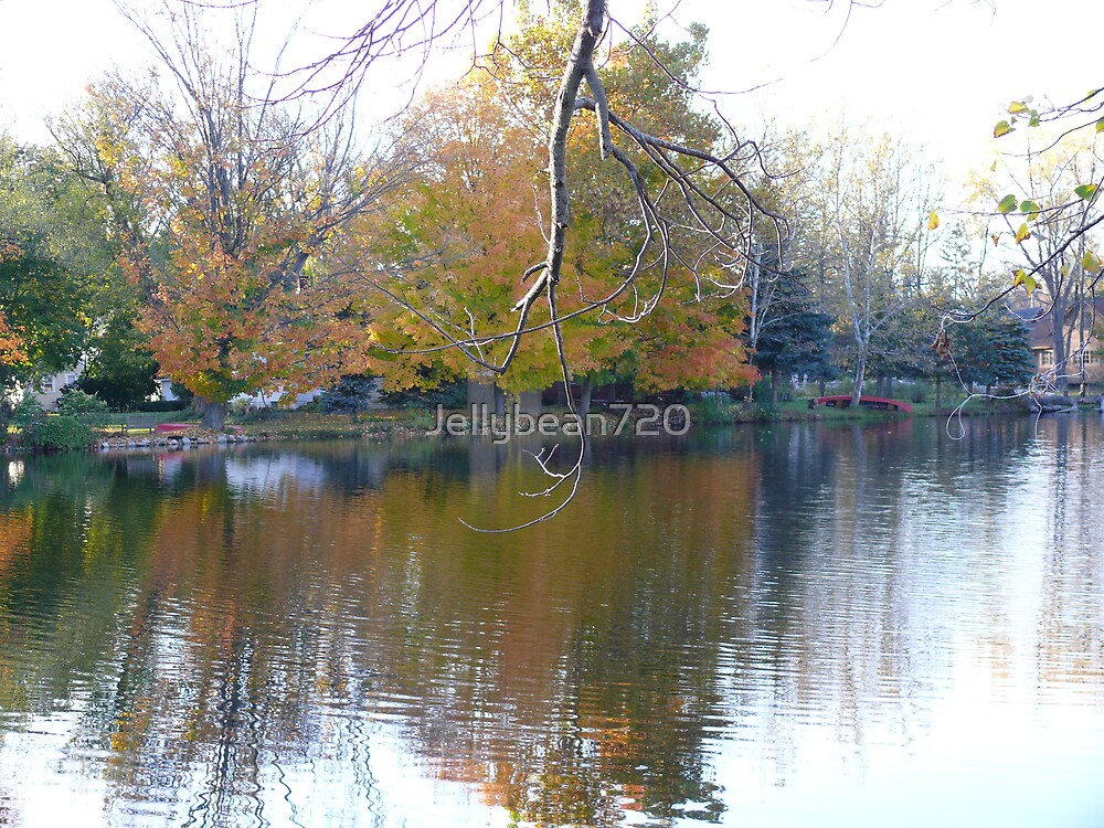 Fall Reflections by Jellybean720