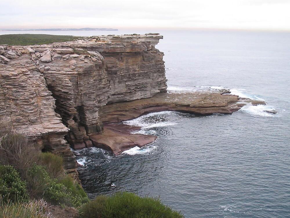 Coast Walk, Royal NationalPark, NSW 3 by Patricia  Knowles
