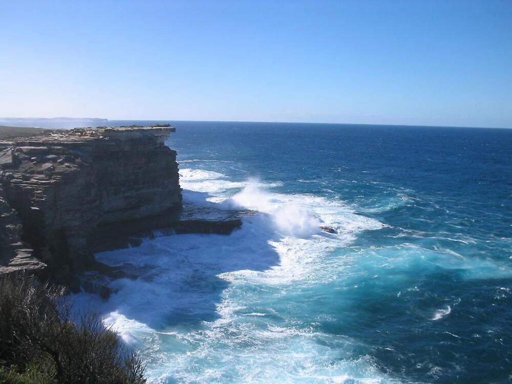 Windy Coast Walk, Royal NationalPark, NSW 3  by Patricia  Knowles