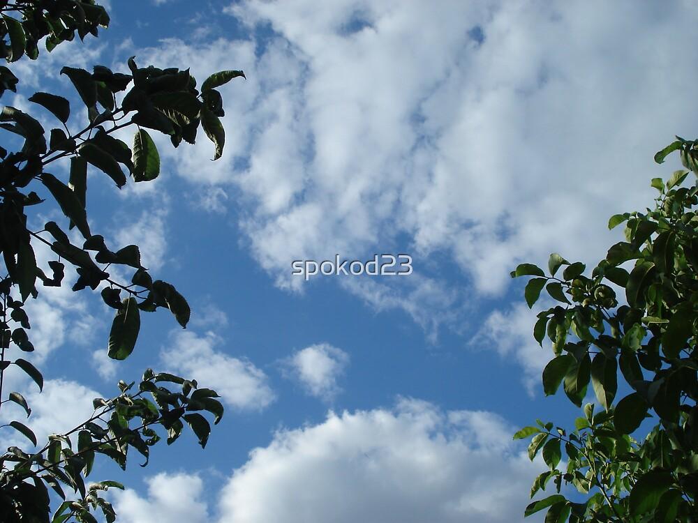 Sky High by spokod23
