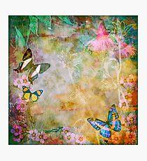 Vibrant Spring Garden Photographic Print