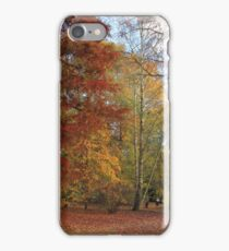 The albana walk, the perfect stroll for fall colors  iPhone Case/Skin