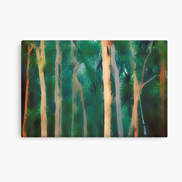 Misty Eucalypt Forest Lienzo