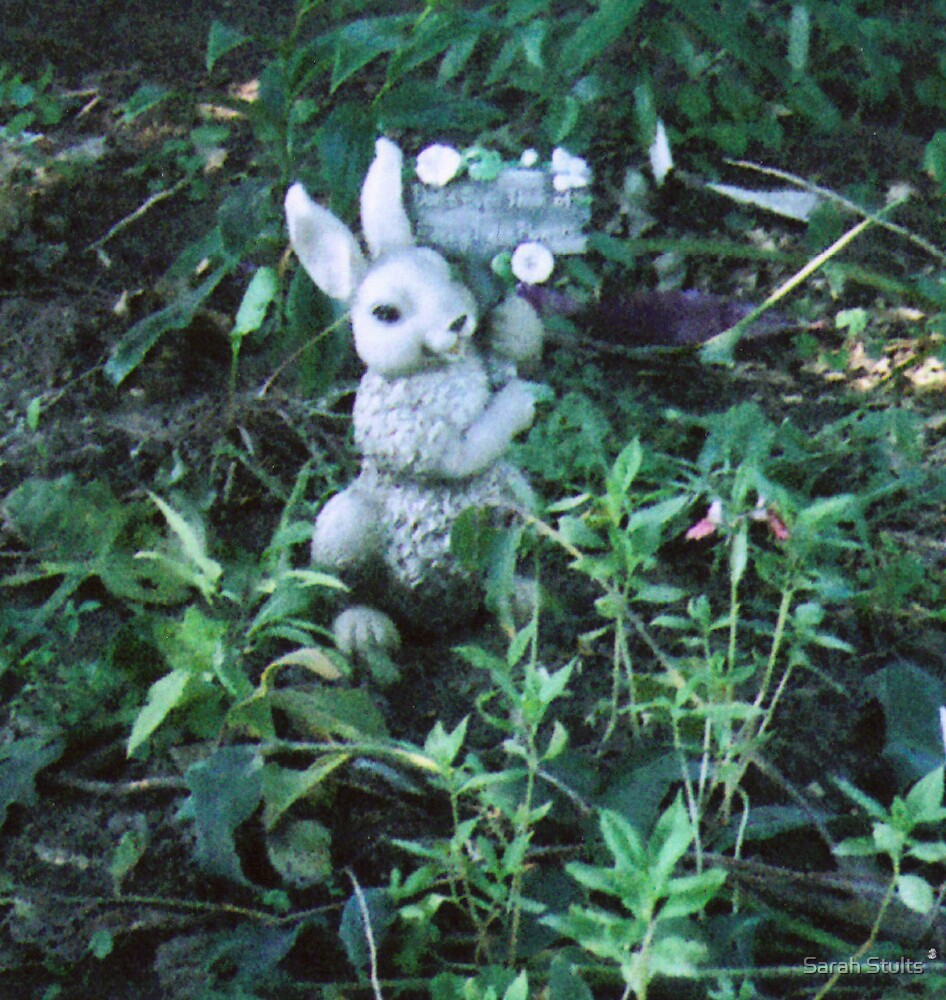Bunny in the Garden  by Sarah Stults