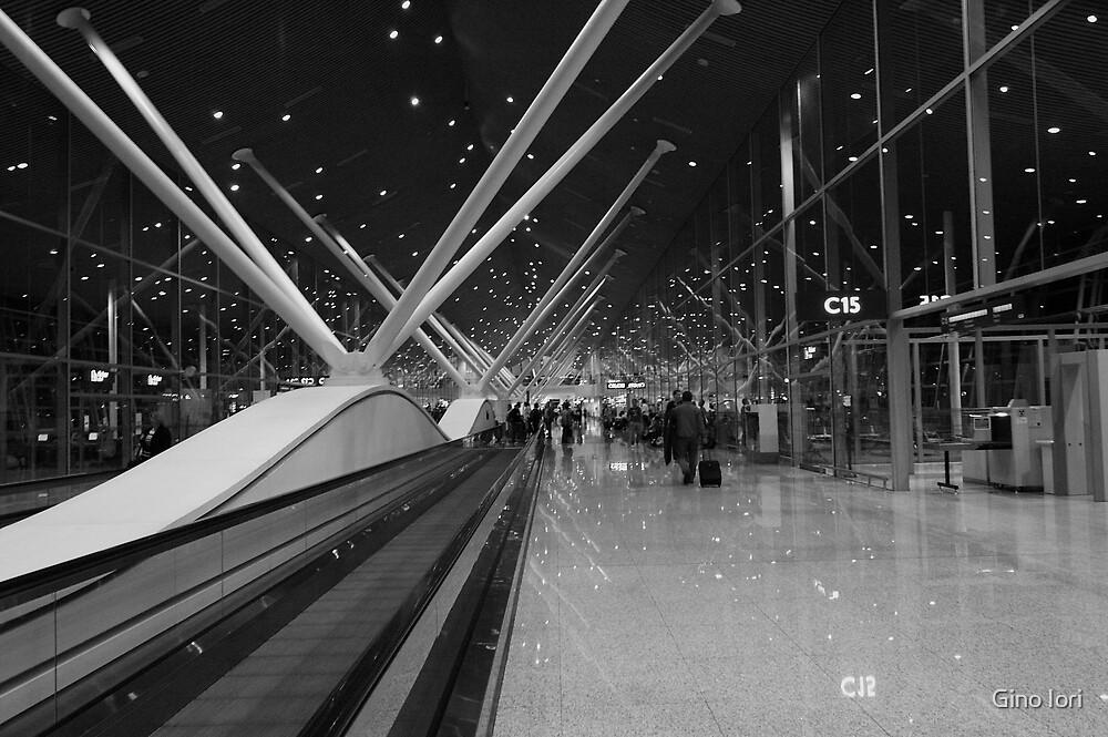 In Transit by Gino Iori