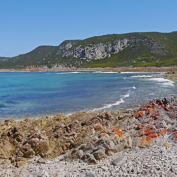 Burgess Cove by grmahyde