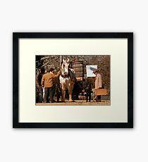Chatham Tourst Framed Print