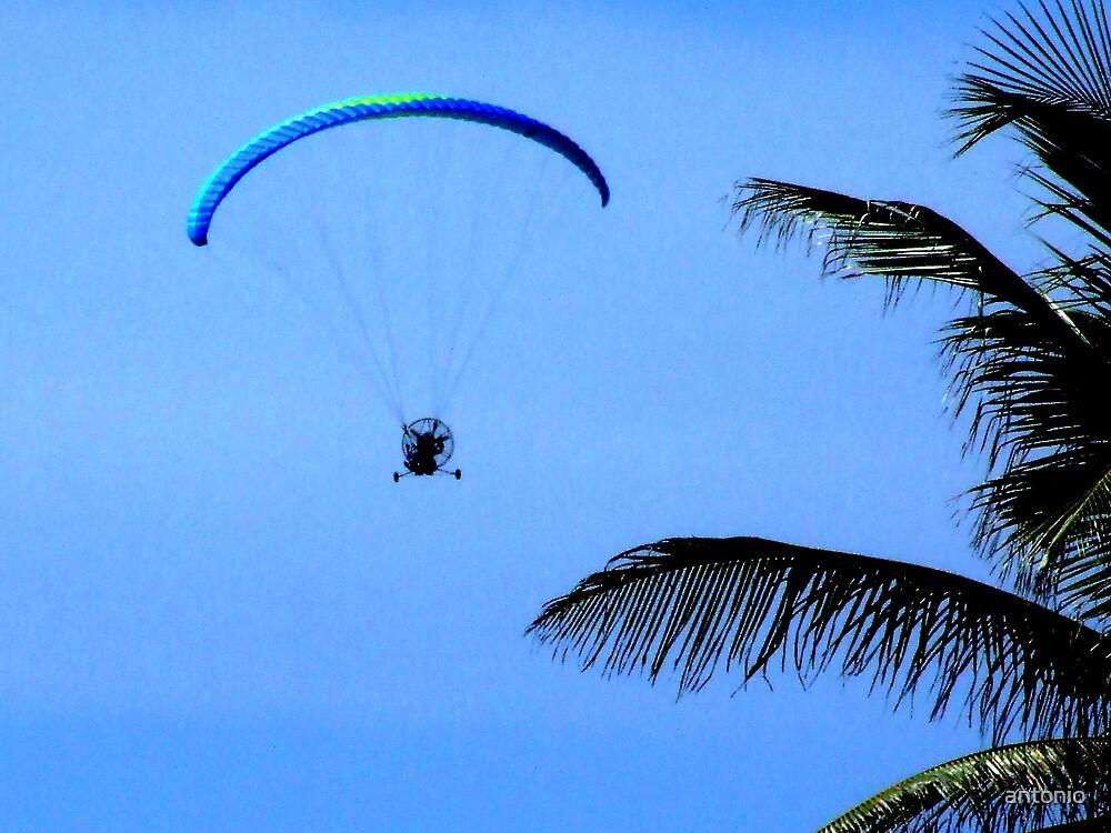 Flying Machine by antonio