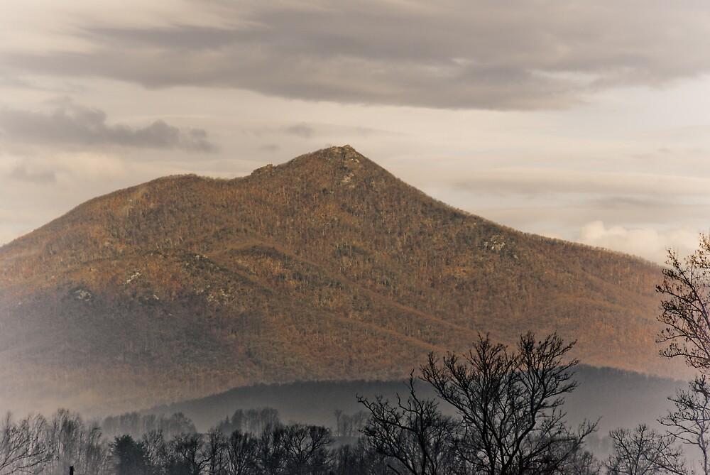 Sharp Top Mountain   by Rod  Adams