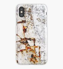 Under the Waterfall iPhone Case