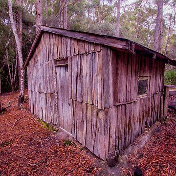Churchills Creek Hut, Florentine Valley, south-western Tasmania by belvoir