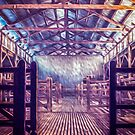 Brindley Woolshed Paint 1 by Candice O'Neill