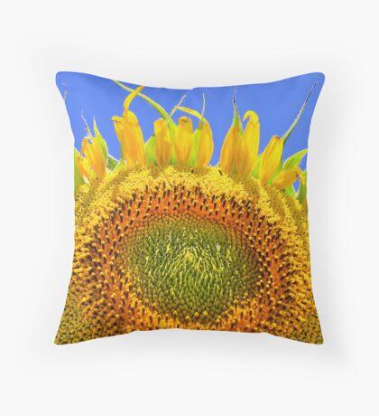 Sun Bather Throw Pillow