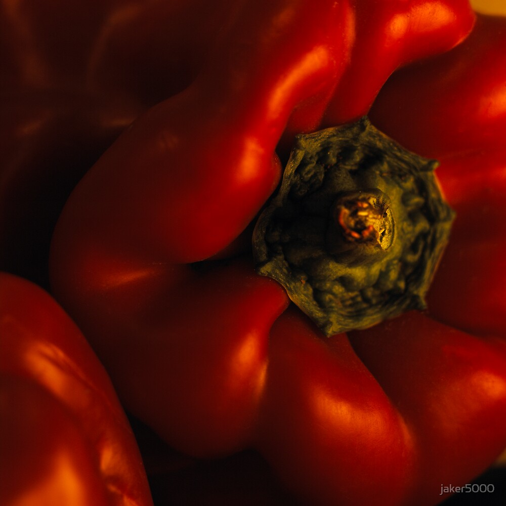 Red capsicum by jaker5000