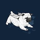 Flying Pug by Aaron Randy