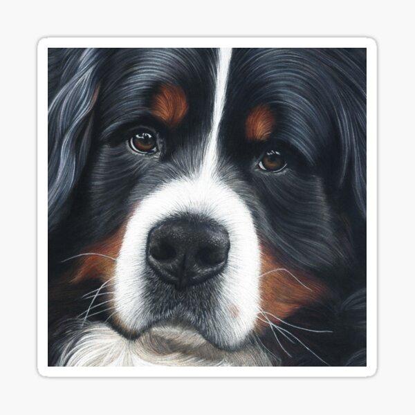 Bernese Mountain Dog - Jesse Sticker