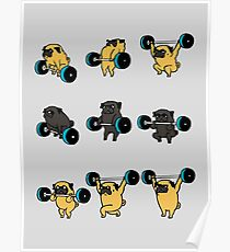 OLYMPIC LIFTING PUGS Poster
