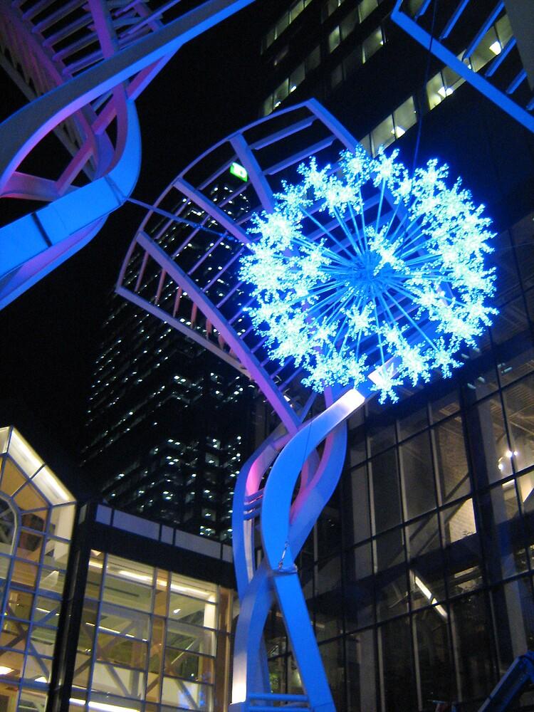 Christmas in Calgary by Sarah Niemi