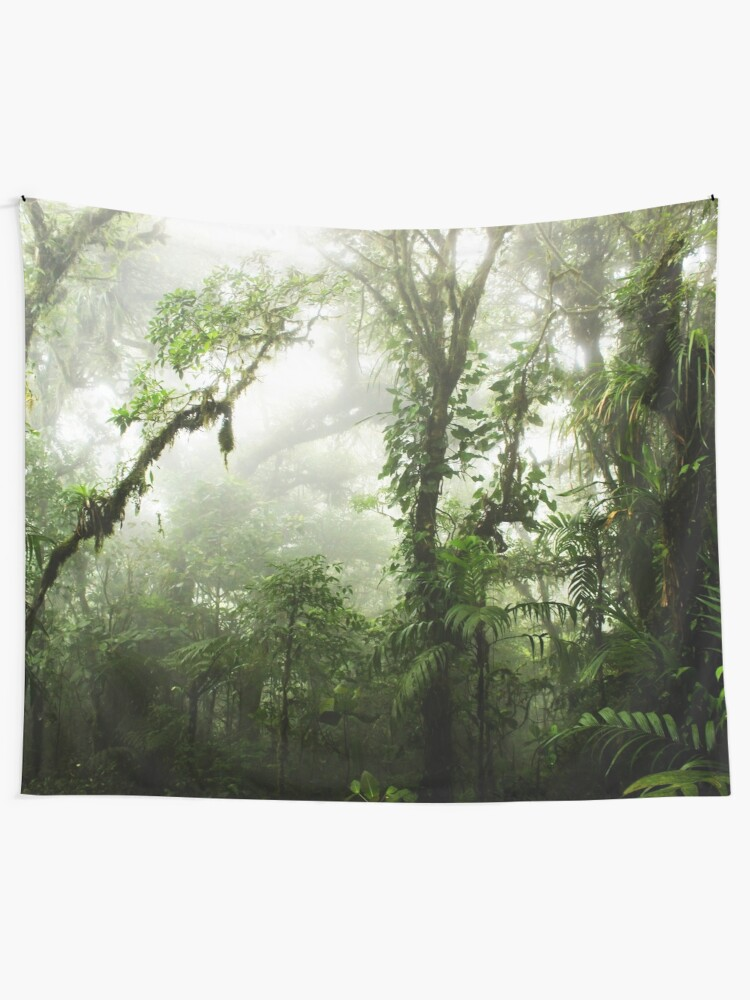Alternate view of Cloud Forest Tapestry