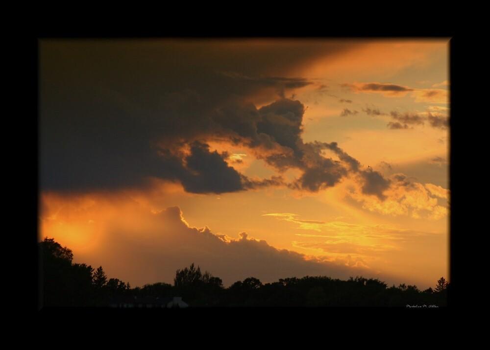 RAIN or SHINE by Madeline M  Allen