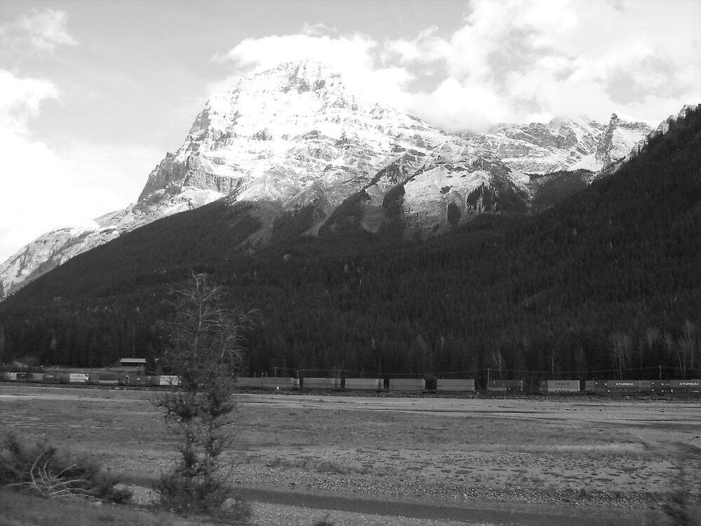 B & W Rockies by Sarah Niemi
