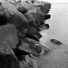 Seawall by Brian Puhl IPA