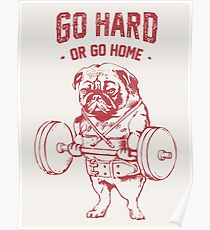 Go Hard or Go Home Pug  Poster