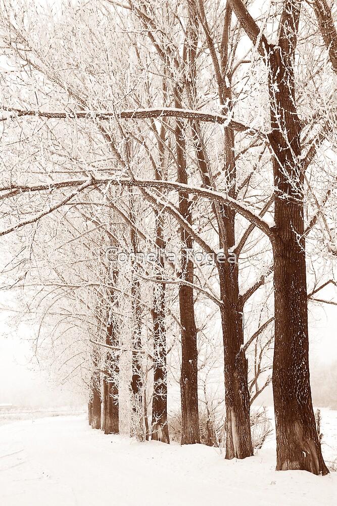 winter silhouettes by Cornelia Togea