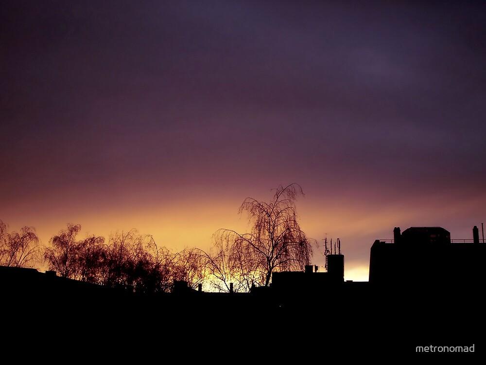 Burning Sky At Dusk by metronomad