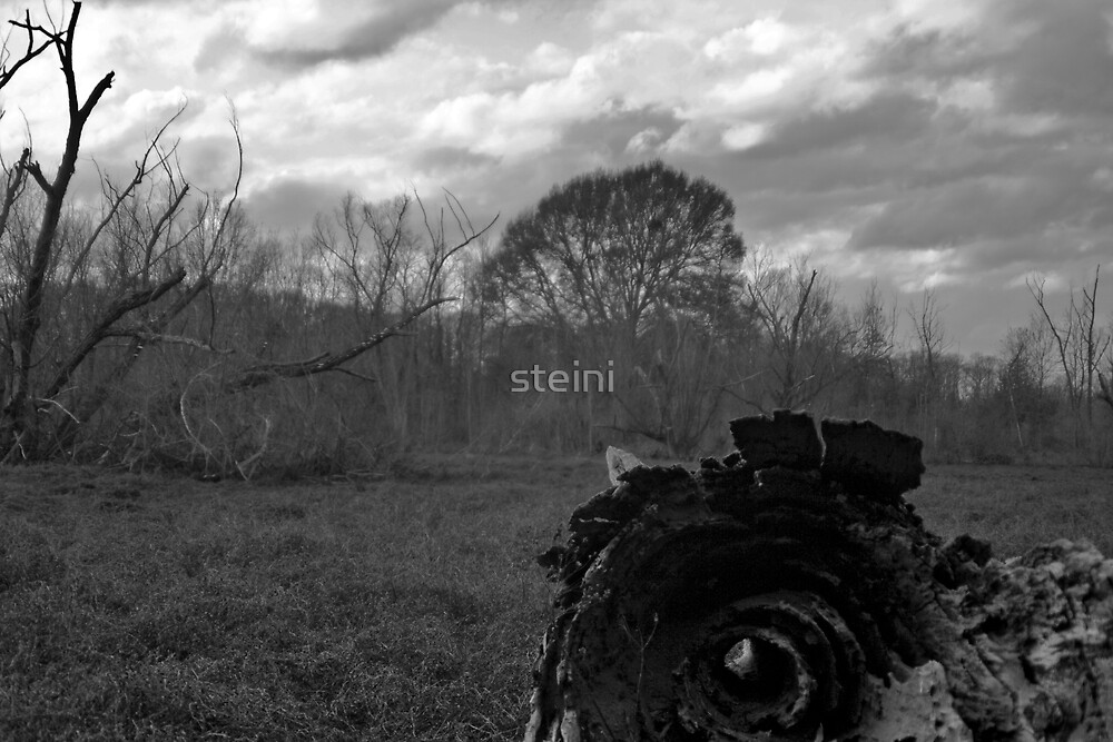 Hollow by steini