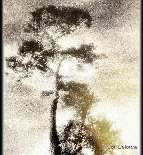 Deadly silence... by Jon Delorme