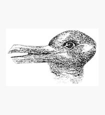 Rabbit, Duck, illusion, Is it a Rabbit or is it a Duck? Optical illusion, visual illusion Photographic Print