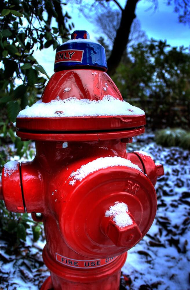 Hydrant Chills by John Heil