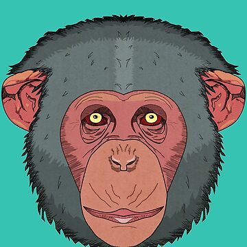 Monkey by krisbicknell