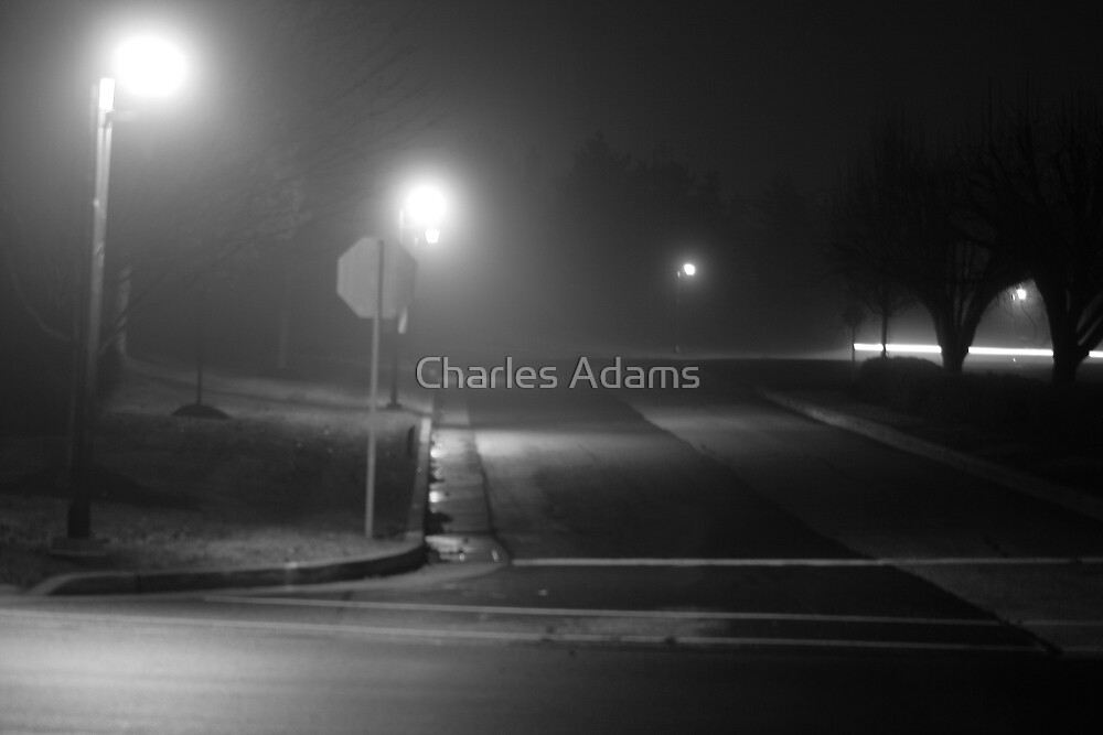 Desolate Corner by Charles Adams