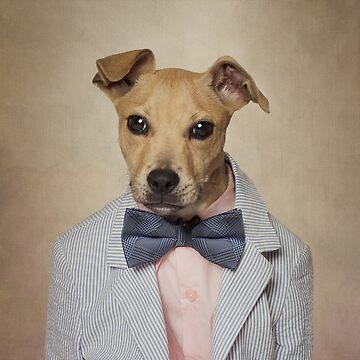 Shelter Pets Project - Butterscotch by TammySwarek