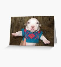 The Little Fashionista Greeting Card