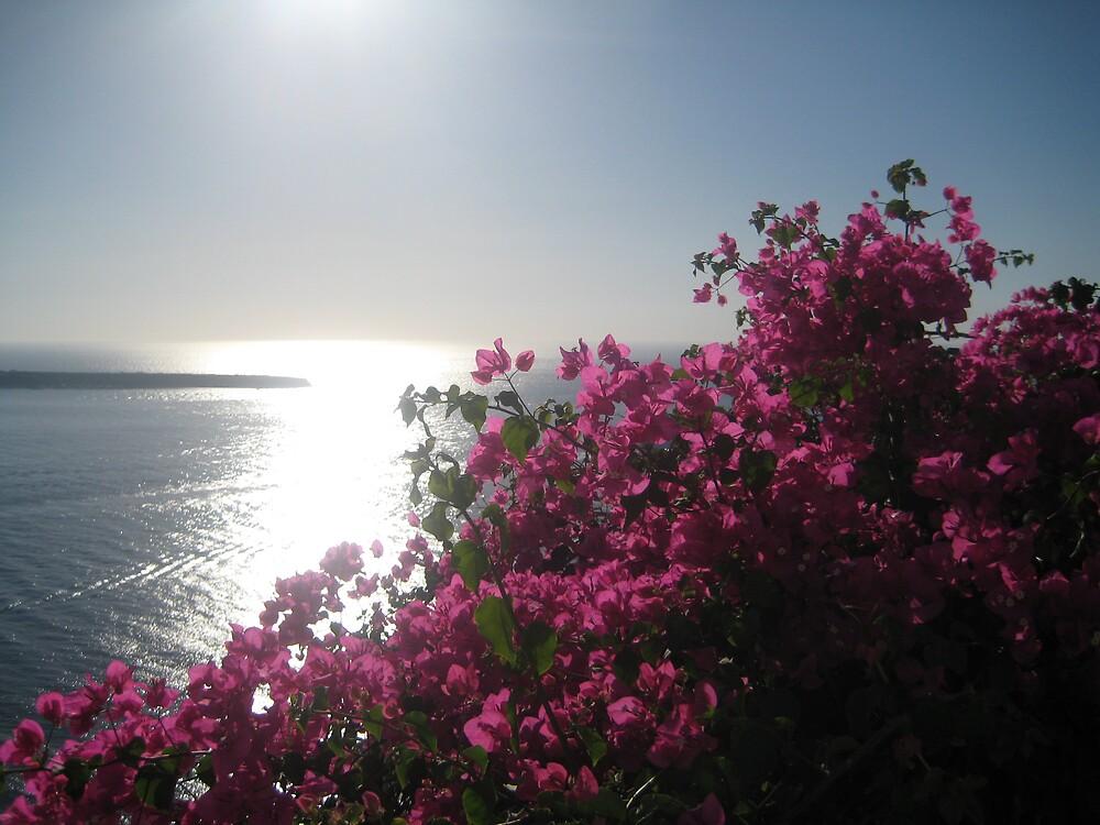 Oia, Santorini by justineb