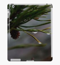 Droplets iPad Case/Skin