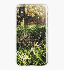 Grass, Trees, Sun, Picninc iPhone Case/Skin