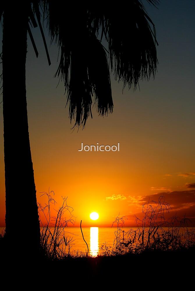 Standing Tall by Jonicool