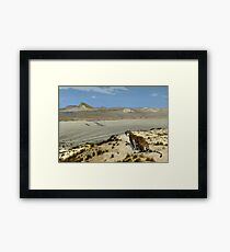 Jean - Leon Gerome - Tiger On The Watch Framed Print
