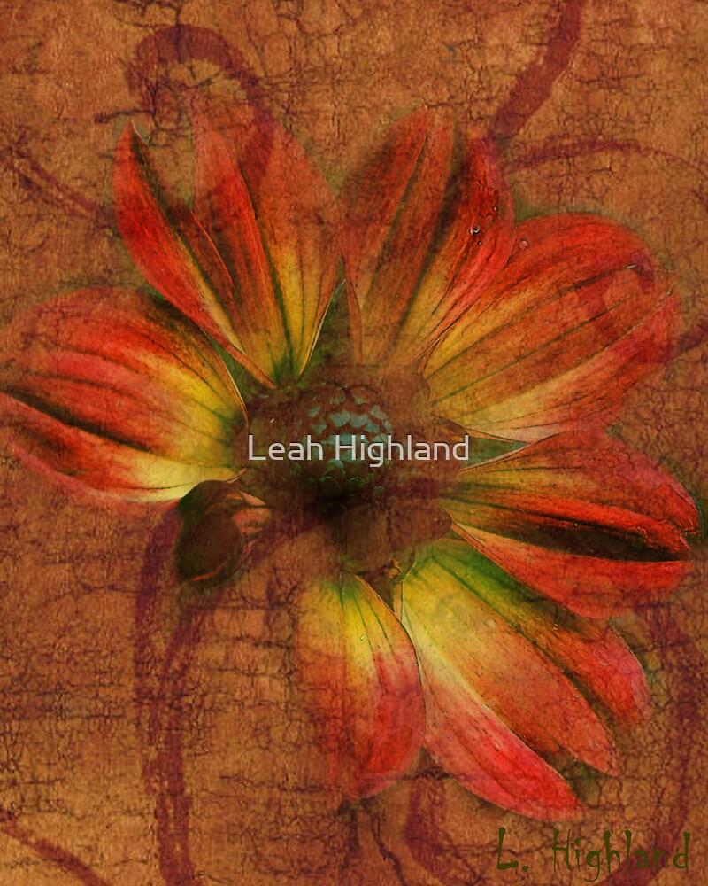 Dahlia My Way by Leah Highland