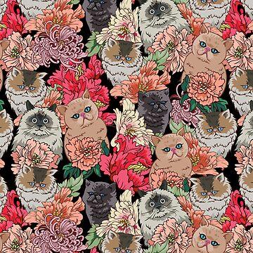 Porque los gatos de Huebucket