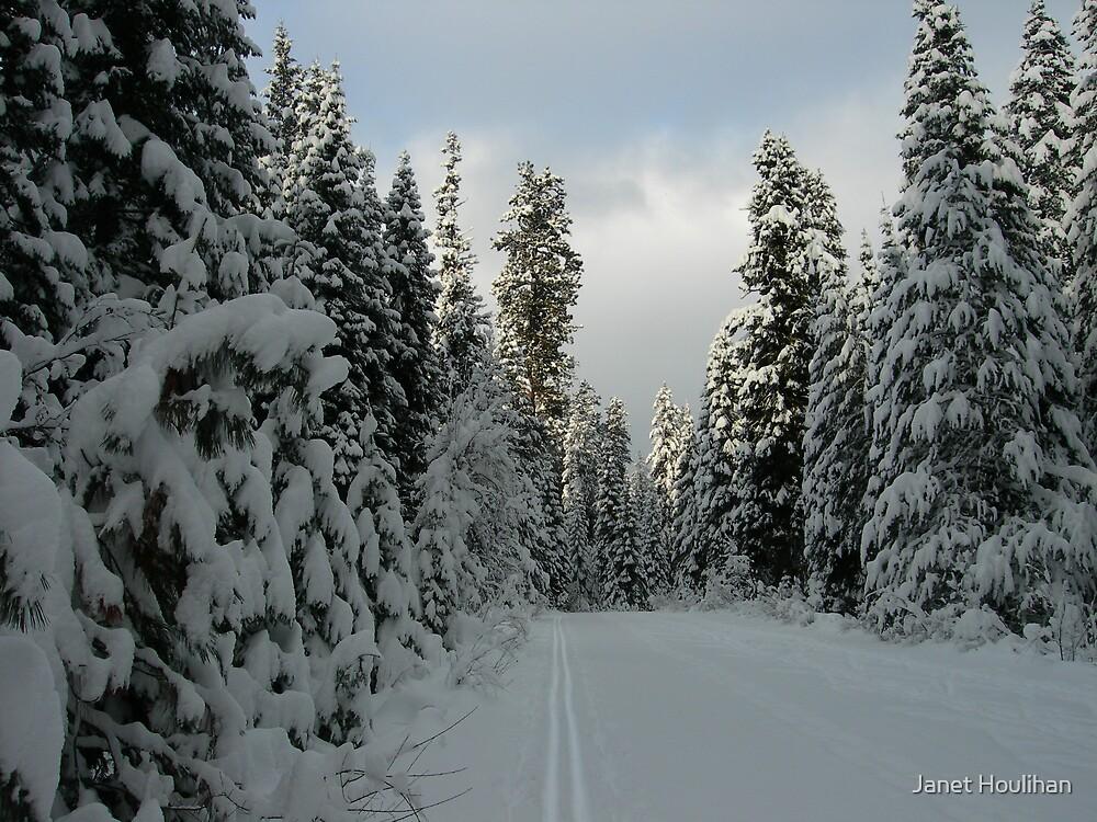 Ski Trail by Janet Houlihan