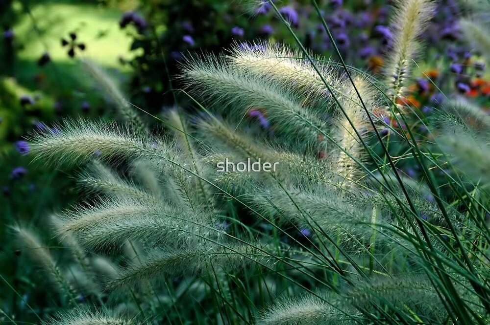 Grass by sholder