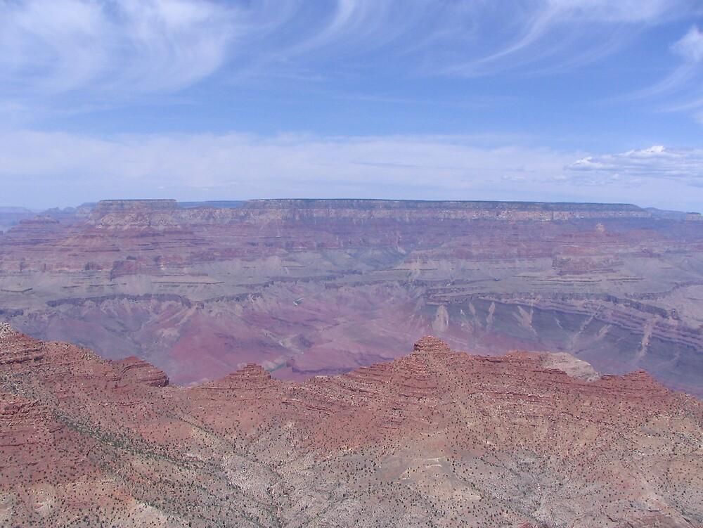Grand Canyon Large Version by Jess Wellington