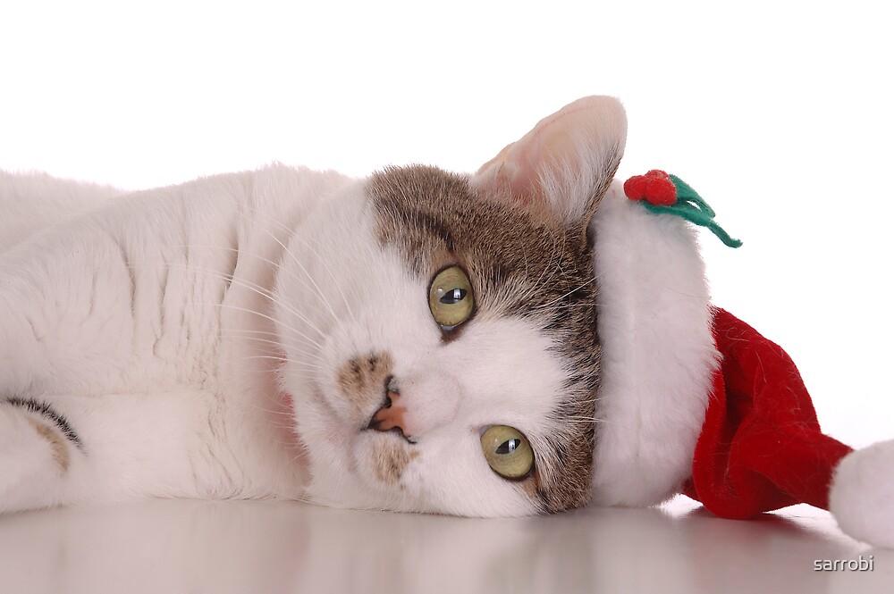 Santa Cat by sarrobi