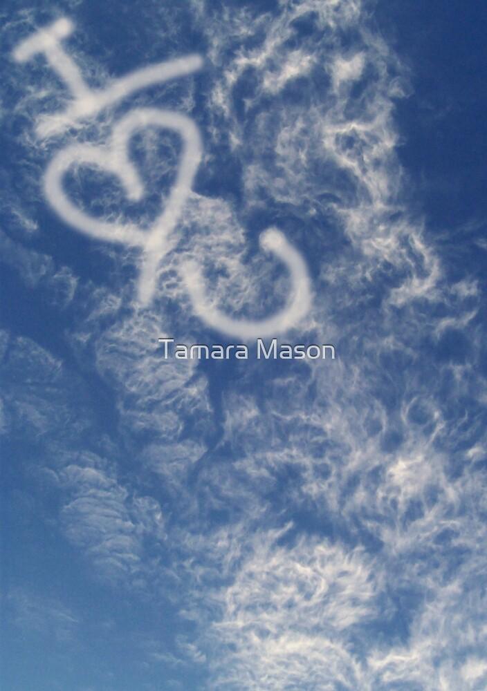 Sky Write by Tamara Mason